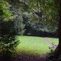 Hoyt Arboretum 2