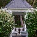 While Lilacs (Ashland, Oregon)
